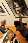 art at the Art Spirit Gallery